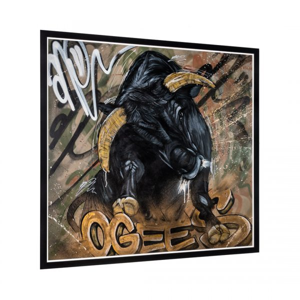 can gallery ogees bull