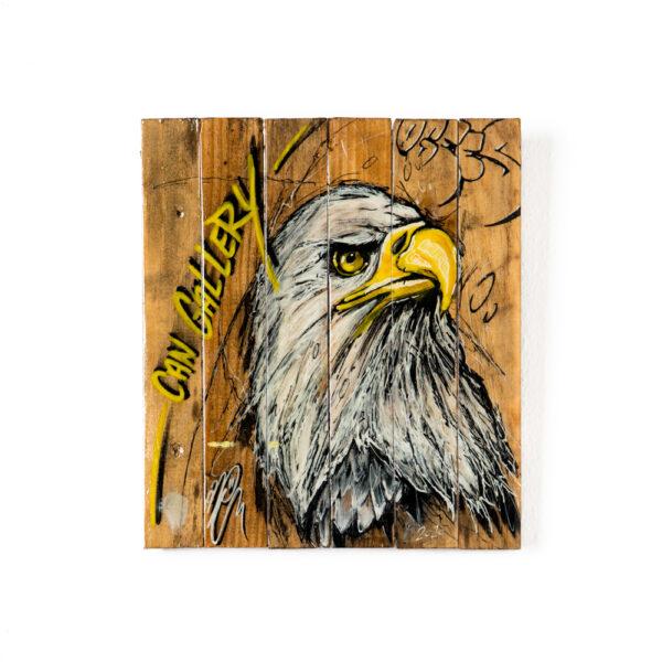 can gallery graffiti bald eagle
