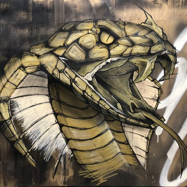 can gallery strijps graffiti cobra snake